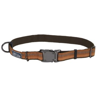 Coastal K9 Explorer Orange Reflective Adjustable Collar