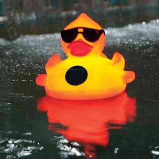 Solar Light Up Derby Duck Pool Chlorinator