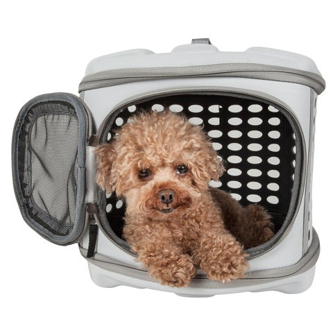 Circular Shelled Perforate Lightweight Collapsible Military Grade Transporter Pet Carrier - One size