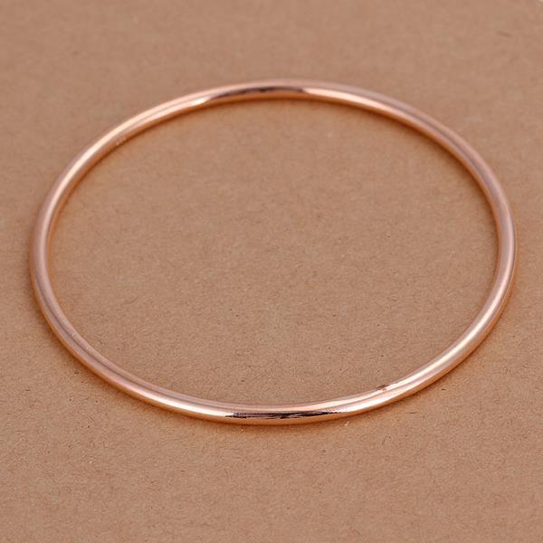 Vienna Jewelry Sterling Silver Gold Coloring Classic Bangle