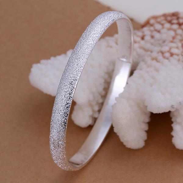 Sterling Silver Jewels Covering Classic Bangle