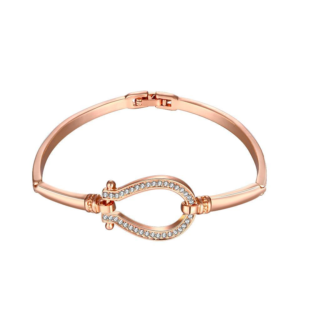 Vienna Jewelry 18K Rose Gold Circle Interlocker Bangle with Austrian Crystal Elements