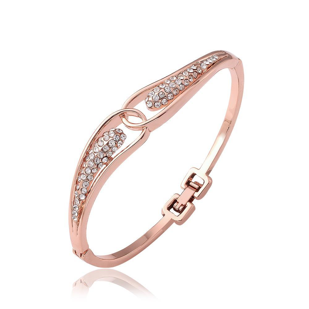 Vienna Jewelry 18K Rose Gold Circular Design Bangle with Austrian Crystal Elements