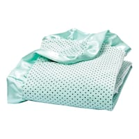 Trend Lab Soft Mint Delightful Dot Velour and Satin Receiving Blanket