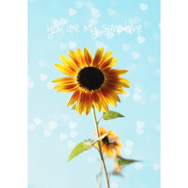 Marmont Hill Art Collective 'You Are My Sunshine' Canvas Art - Multi-color
