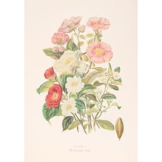 The Camellia Tribe, Elizabeth Twining