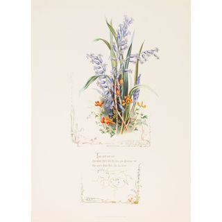 Shakespeareâs Flowers, Blue Bells
