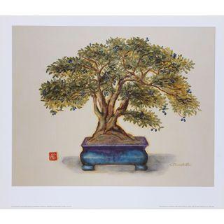 Alexandra Churchill 'Bonsai in Turquoise Vessel' Print