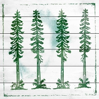 Marmont Hill Art Collective 'Adirondack Mountains' White Wood Art