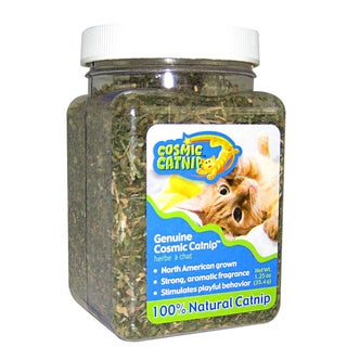 Our Pet Cosmic Catnip Jar 1.25oz