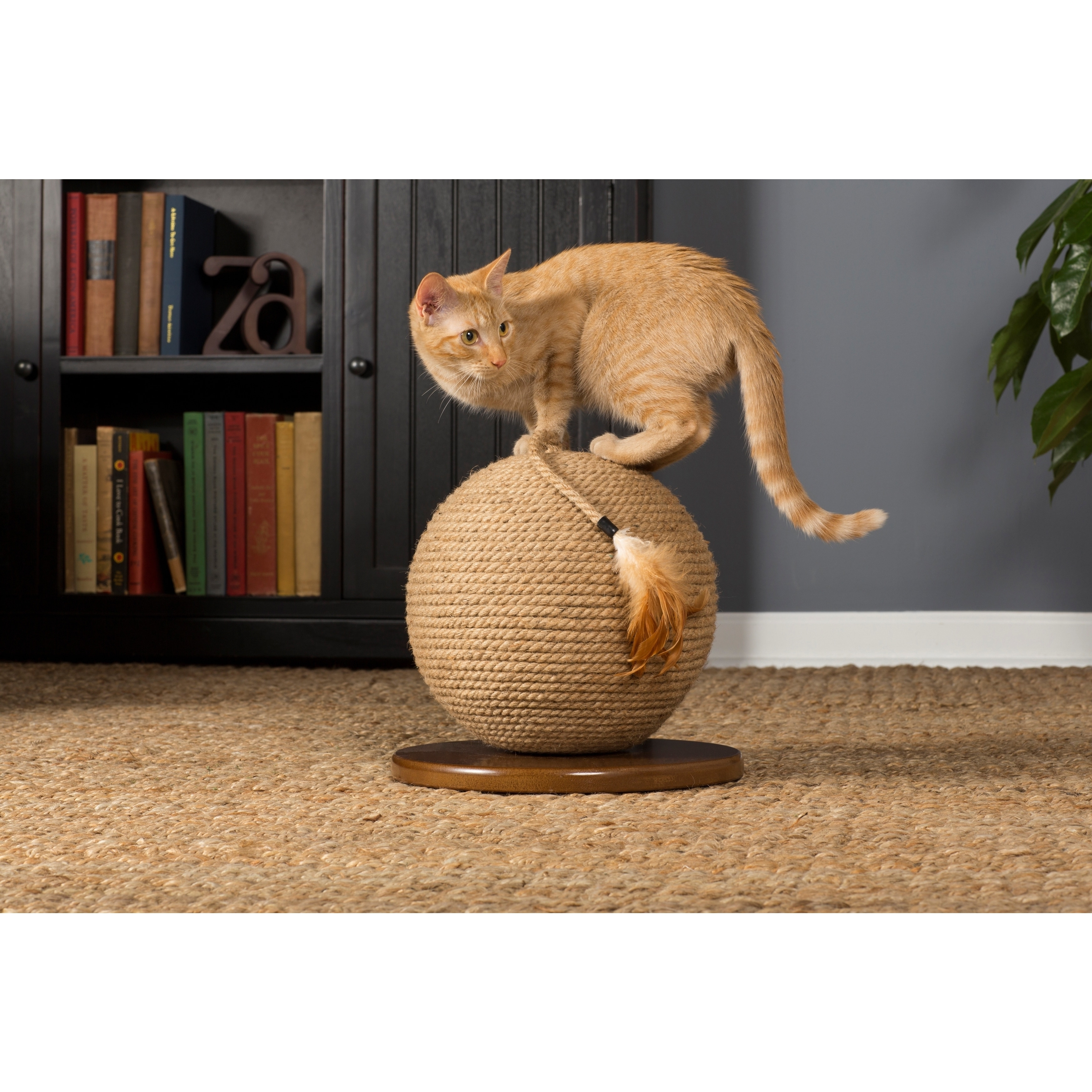 Prevue Pet Products Kitty Power Paws Sphere with Tassel C...