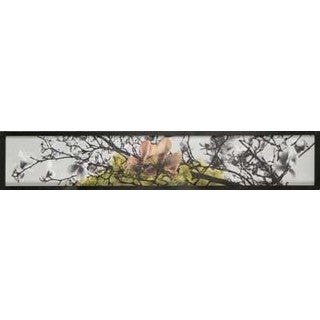 Christina Lovisa 9 1/8X49 1/8 Blossom Branch IV Framed Fresco Canvas Wall Art