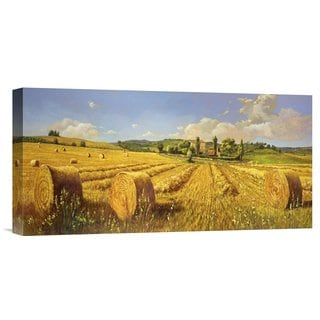 Global Gallery Andrea Del Missier 'Campo in Toscana' Stretched Canvas Artwork
