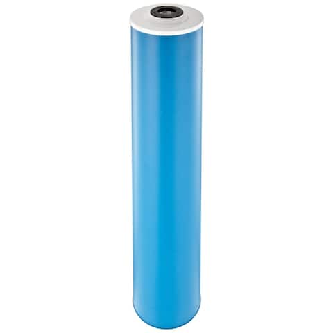 Pentek GAC-20BB Drinking Water Filters (20-inch x 4.5-inch) - Blue
