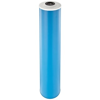 Pentek GAC-20BB Drinking Water Filters (20-inch x 4.5-inch)