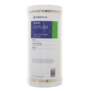 Pentek ECP5-BB Pleated Sediment Water Filters (9.75-inch x 4.5-inch)