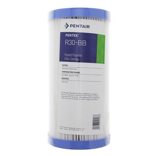 Pentek R30-BB Pleated Polyester Water Filters (9.75-inch x 4.5-inch)