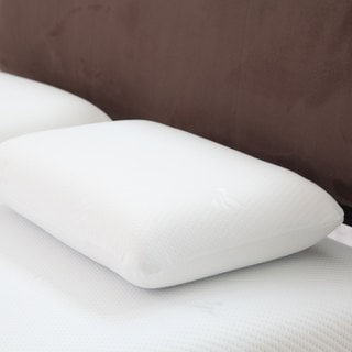 Windsor Home Comfort Gel Memory Foam Pillow with Removeable Cover