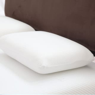 Windsor Home Memory Foam Pillow with Removeable Cover