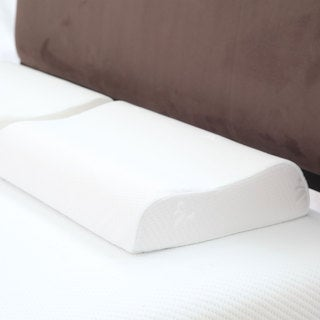 Windsor Home Contour Memory Foam Pillow with Removeable Cover