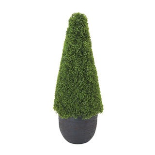Outstanding and Unique Grass Cone
