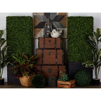 Exclusive and Utmost Beautiful Boxwood Hedge