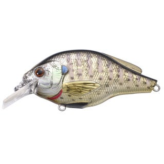 LiveTarget Bluegill Squarebill Metallic/ Gloss no. 6