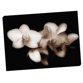 Portfolio Canvas Decor Ilona Wellmann 'Blossoms I' Framed Canvas Wall Art