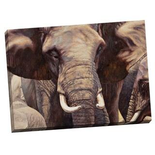 Portfolio Canvas Decor Sokol-Hohne 'Elephant Approach' Framed Canvas Wall Art