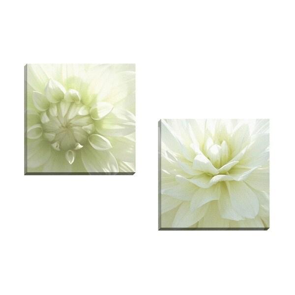 Portfolio canvas decor mary campanga 39 white blossom i for White wall art
