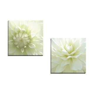 Portfolio Canvas Decor Mary Campanga 'White Blossom I' Framed Canvas Wall Art (Set of 2)