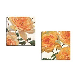 Portfolio Canvas Decor Elinor Luna 'Wild Roses I' Framed Canvas Wall Art (Set of 2)