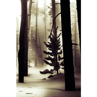 Portfolio Canvas Decor Leland Howard 'Winter Forest' Framed Canvas Wall Art