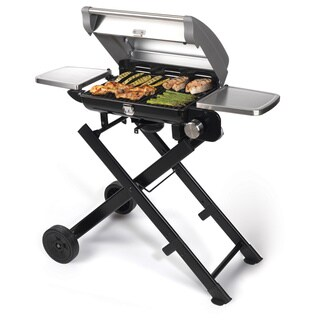 Cuisinart CGG-240 All Foods Roll-Away Portable Gas Grill
