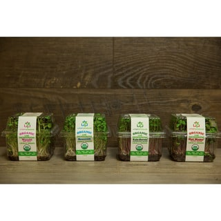Urban Produce Certified Organic Living Microgreen Variety Pack (Pack of 4)