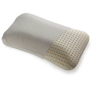 Fashion Bed Group Brisa Memory Foam Travel Pillow with Portable Zippered Carrying Case