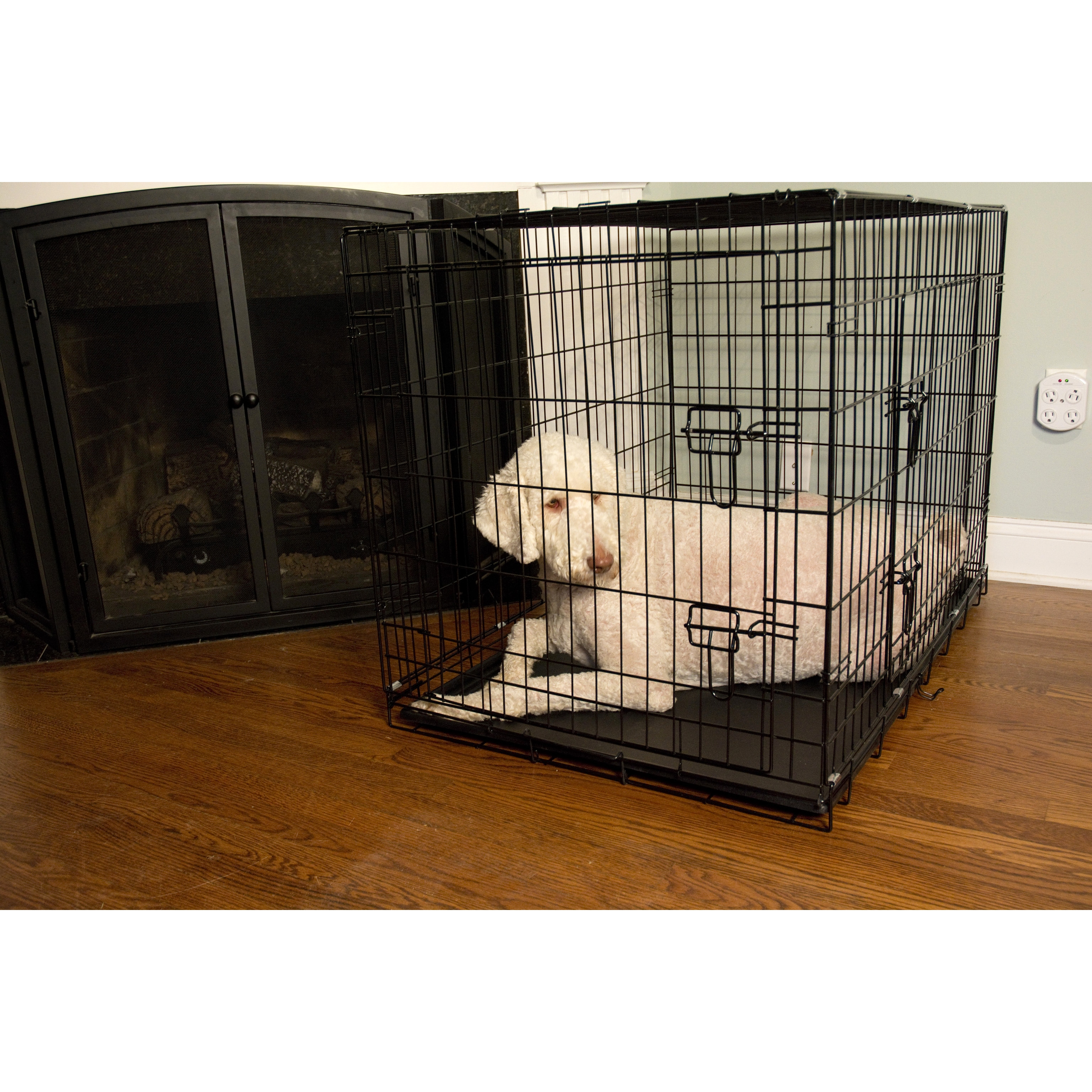 Iconic Pet Foldable Double Door Wire Pet Crate (Extra-Lar...
