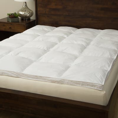 233 Thread Count Cotton Fiber Bed by Grandeur Collection