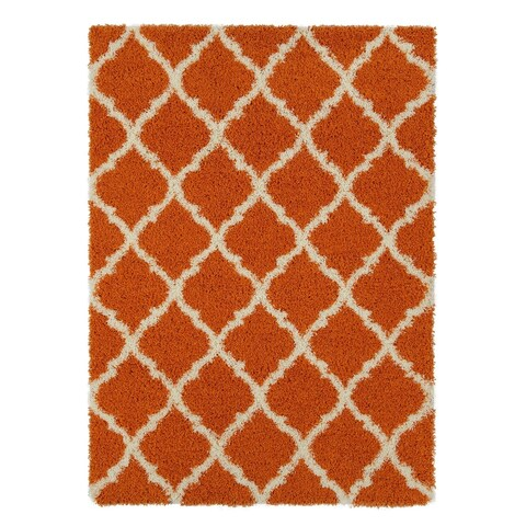 Ottomanson Ultimate Collection Moroccan Trellis Design Shag Area Rug