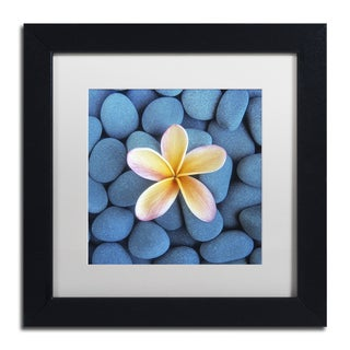 David Evans 'Plumeria & Pebbles 6' Matted Framed Art