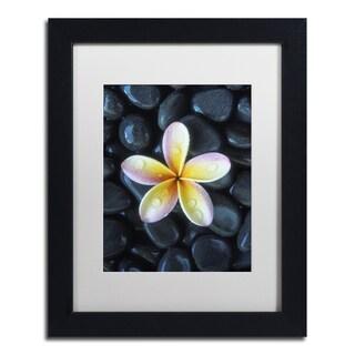 David Evans 'Plumeria & Pebbles 3' Matted Framed Art