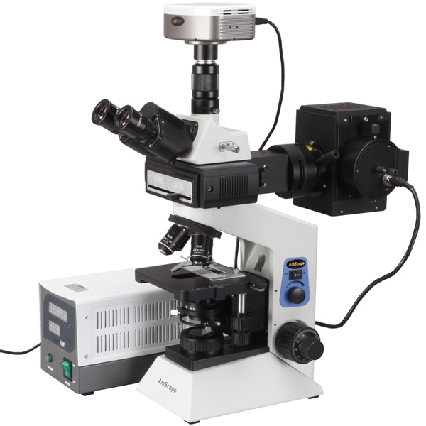 40x-2000x Infinity Plan Fluorescent Microscope and 5mp Fluo Camera