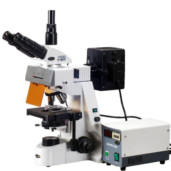 40x-2500x Plan Infinity Extreme Widefield Epi-fluorescent Microscope