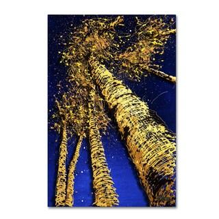 Roderick Stevens 'Aspen Sky 2' Canvas Art