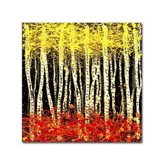 Roderick Stevens 'White Aspens 2' Canvas Art
