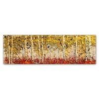 Roderick Stevens 'Fall PanorAspens' Canvas Art - Multi