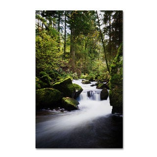 Philippe Sainte-Laudy 'Waterfall in the Forest' Canvas Art