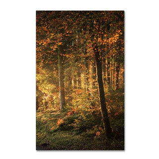 Philippe Sainte-Laudy 'Some Memories Never Fade' Canvas Art