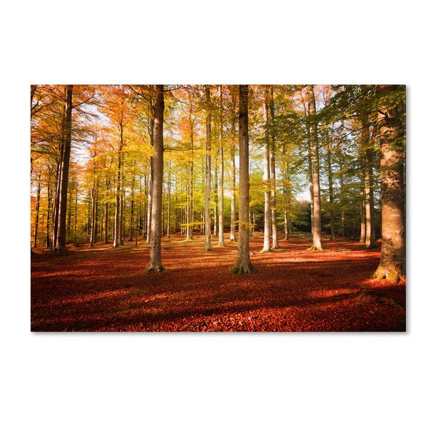 Philippe Sainte-Laudy 'Rhythm' Canvas Art - Multi