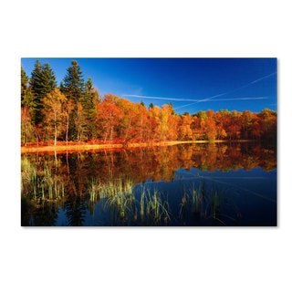 Philippe Sainte-Laudy 'Call of the Wild' Canvas Art
